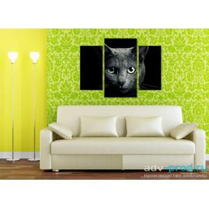 Модульная картина - Черная кошка