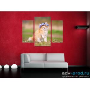 Модульная картина - Рыжий котенок